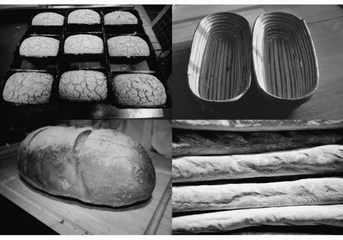 Some of Blackberry Bakery's breads