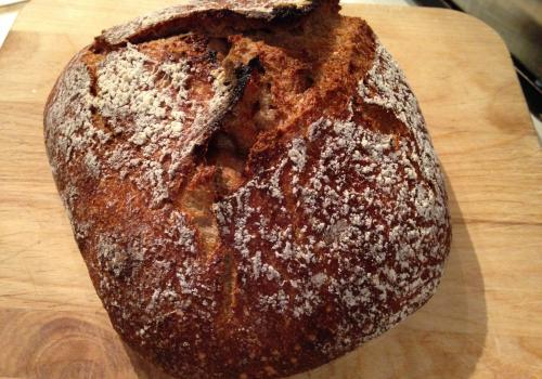 whole wheat bread from revived starter