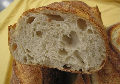 IMG_5592.JPG Another crumb White Bread ~ 30% sourdough flour content Final water ~ 70%